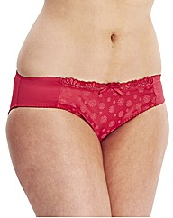 Curvy Kate Daisie Brief