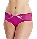Curvy Kate Dare Brief