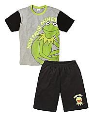 Kermit PJ Set