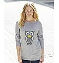 Novelty Owl Jumper