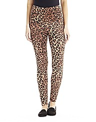 Regular Animal Print High Waist Leggings