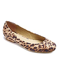 Sole Diva Low Heel Shoes EEE