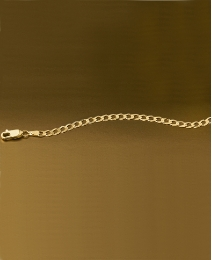 9 Carat Gold Curb Chain