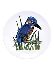 British Birds Plates Set of 6