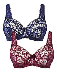Shapely Figures Navy Damson FullCup Bras