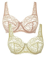 Shapely Figures Ivory Pink Full Cup Bras