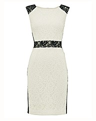 Montique Lace Panel Dress