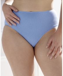 Shapely Figures Pack of 4 Briefs