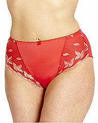 Shapely Figures Red Ava Knicker