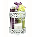 Peartree Bird Cage Gift Set