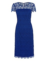 Gina Bacconi Filigree Lace Dress