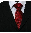 Knightsbridge Woven Paisley Tie