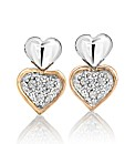 9ct White Gold Rose Gold-Plated Earrings