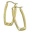 9 Carat Gold Large Drop Earrings