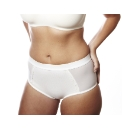 Shapely Figures Control Briefs