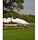Steam Train Dining Experience for Two