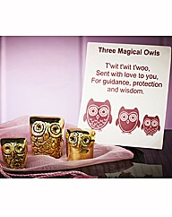 Three Magical Owls
