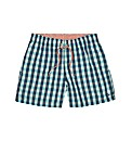 Tommy Hilfiger Mighty Check Swim Shorts