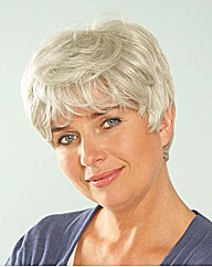 Elaine Naturally Grey Wig