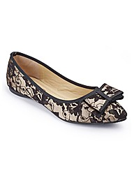Lace Pointed Shoe D