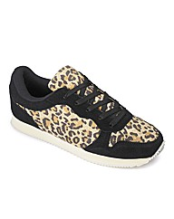 Sole Diva Printed Trainer EEE Fit