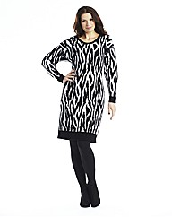 Zebra Jumper Dress