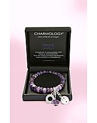 Charmology Gemstone Bracelet