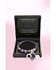 Charmology Gemstone Bracelet
