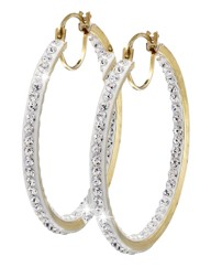 Evoke 9 Carat Gold Clear Hoop Earrings