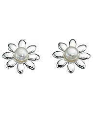 Ladies Sterling Silver Pearl Earrings