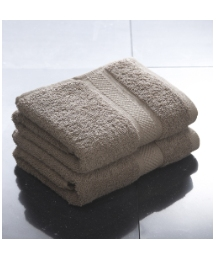 Premier Collection Egyptian Hand Towels