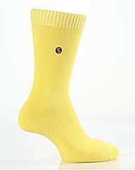 COLOUR BUST SOCKS