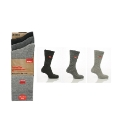 Pack of 3 Kickers Socks