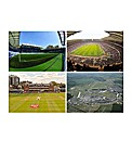 Sporting Venue Experience