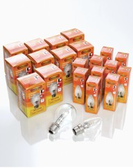 Halogen Bulbs 8+2 Free Golf Ball