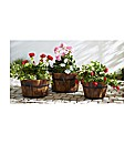 Pack Of 3 Wood Planters