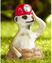 Solar Powered Meerkat The Miner