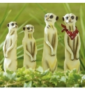 Solar Meerkat Family