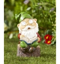 Solar Reading Gnome