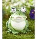 Bright Eyes Solar Frog