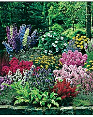 60 Cottage Garden plants