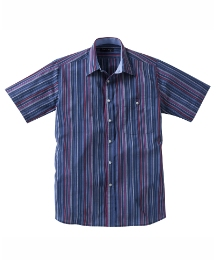 & Brand Tall Striped Shirt