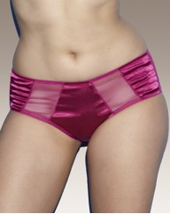 Splendour Satin and Mesh Knickers
