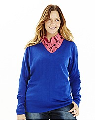 Basic V Neck Sweater