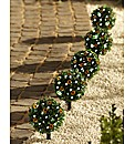 Set Of 5 Bay Tree Solar Lights
