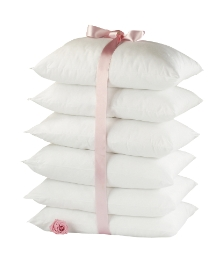 Spring Back Anti Allergy Pillows
