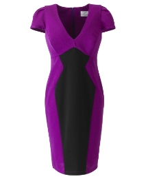 Laurens Collection Colour Block Dress