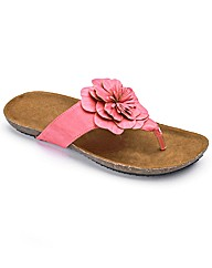 Simply Be Flower Toe Post E Fit