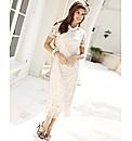 Joanna Hope Petite Fringe Lace Dress