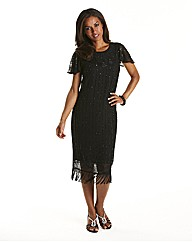 Joanna Hope Beaded Fringe Dress